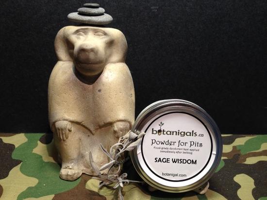Sage Wisdom promo.jpg