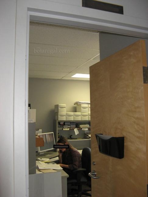 Dawn's new office redacted botanigaled.jpg