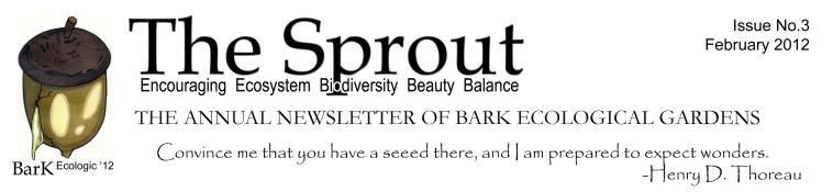 Sprout Letterhead Feb 2012 flattened.jpg