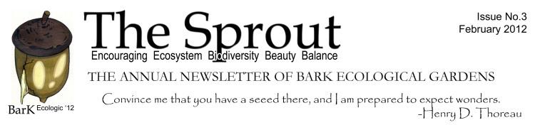 Sprout Letterhead Feb 2012 flattened.jpg