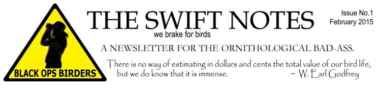 the-swift-notes-letterhead-2015-final