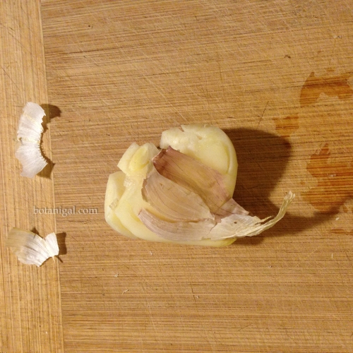Garlic peel cracked IMG_3390.jpg