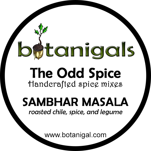 The Odd Spice SAMBHAR MASALA FOR WEB.jpg