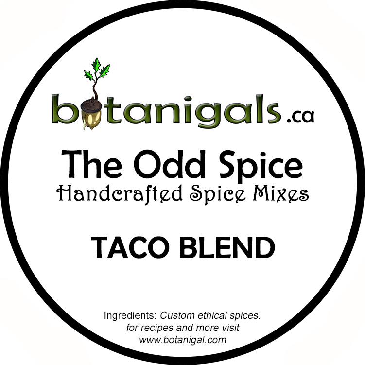 the-odd-spice-taco-blend-web