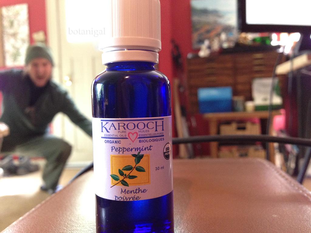 KaroocH Peppermint oil 066 wtm.jpg
