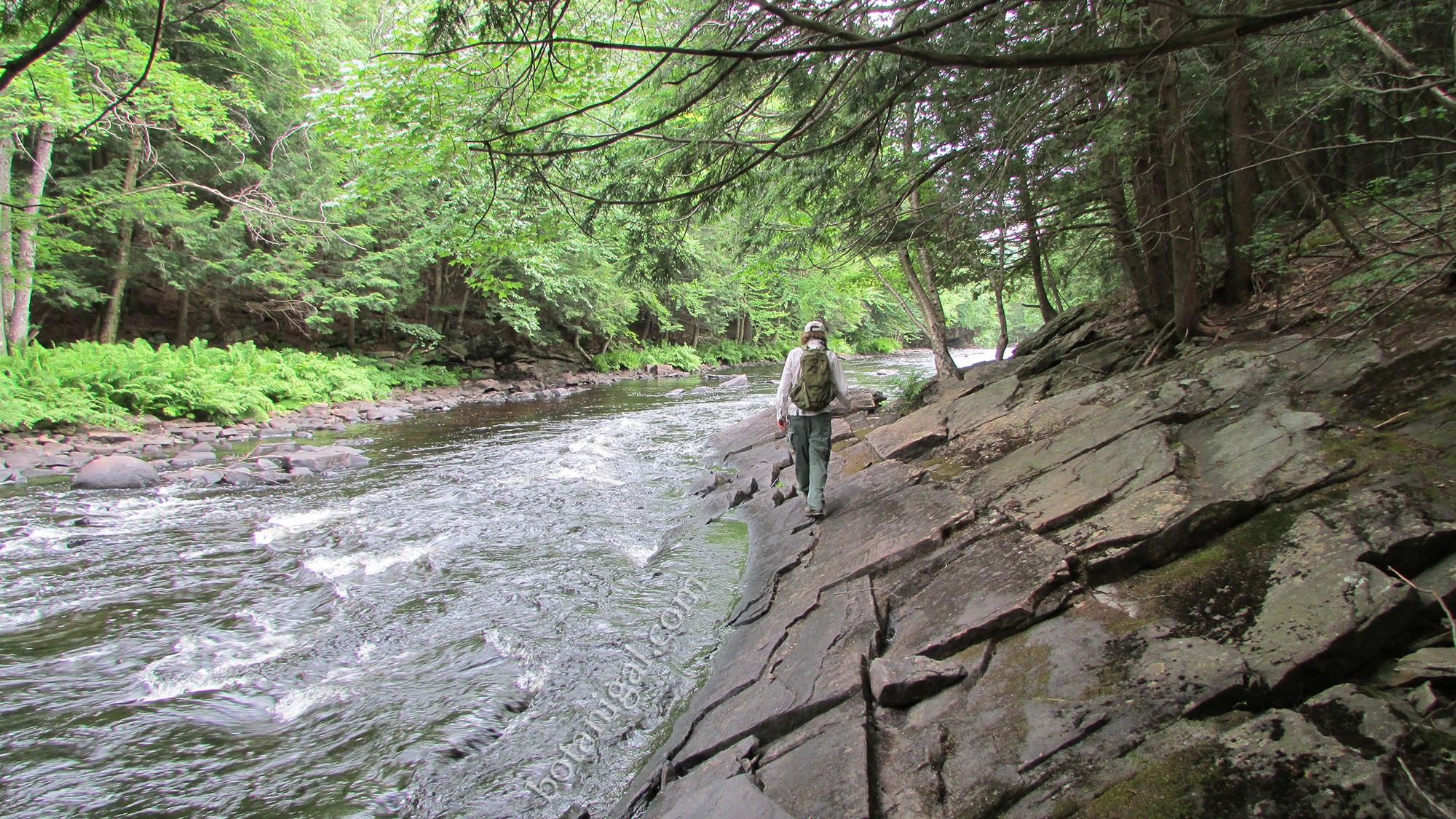 R.K. 2 Oxtongue Rapids Hiking along the rocks July 24 2016 035 wtm.jpg