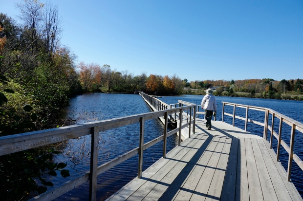 R.K. 2 Hunter's Bay Floating trail West Side October 18 2017 wtm_RXB9040