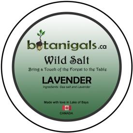 Wild Salt LAVENDER for 3in stickers.jpg