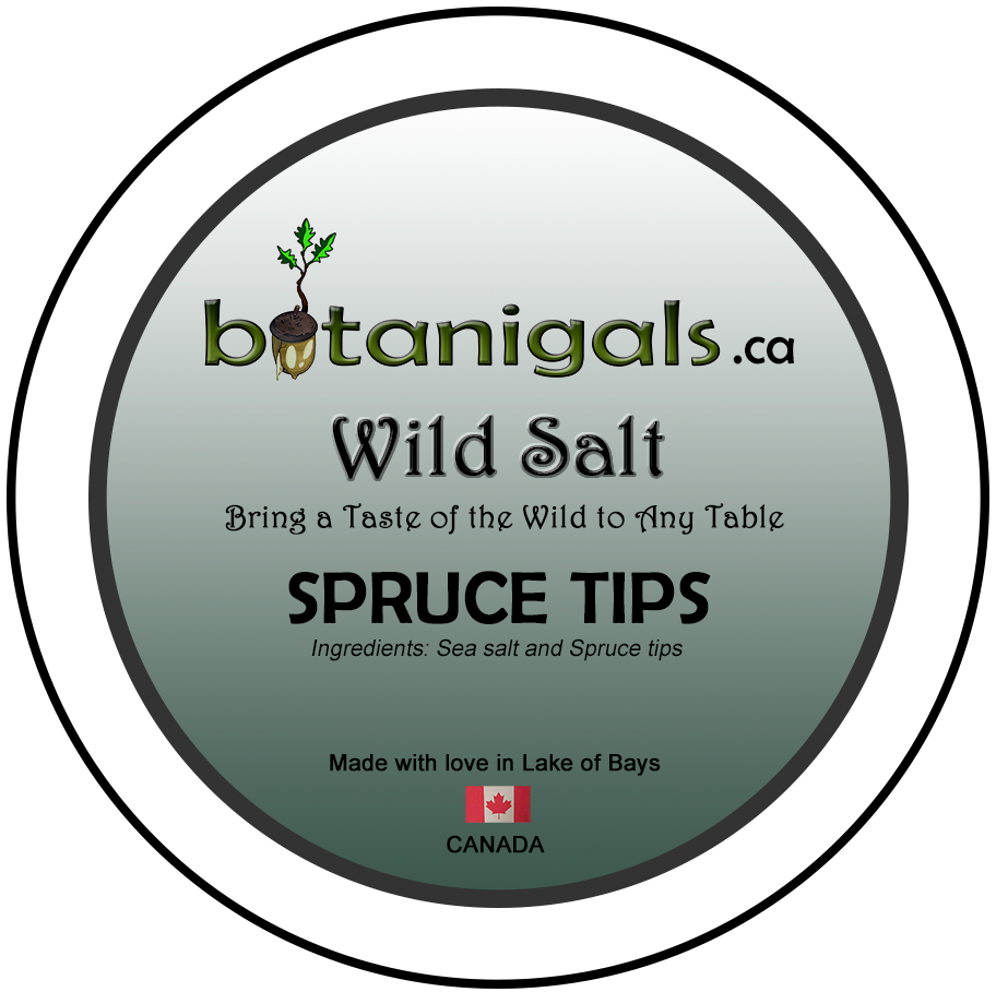 Wild Salt SPRUCE TIPS  for 3in stickers for print.jpg