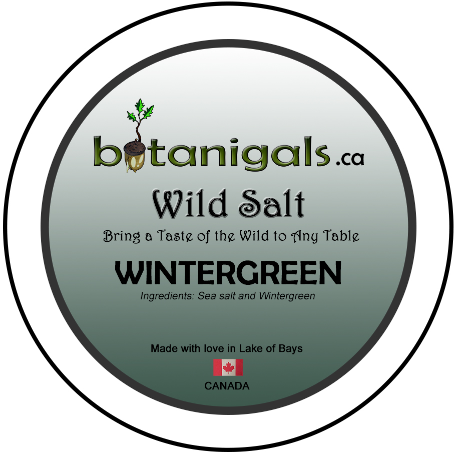 Wild Salt WINTERGREEN  for 3in stickers for print.jpg
