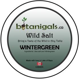 Wild Salt WINTERGREEN  for 3in stickers for print.jpg